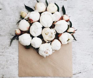 flowers, beautiful, and peonies image