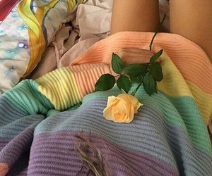 rose, flowers, and aesthetic image
