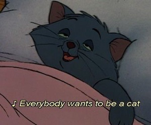 cat, quotes, and disney image