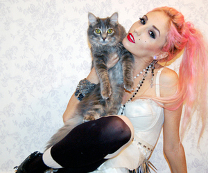 audrey kitching, cat, and pink hair image