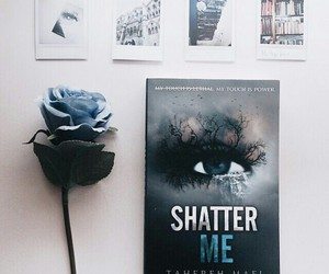 book and shatter me image