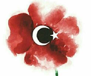 turkey, istanbul, and prayforturkey image