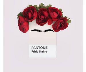 Frida and pantone image