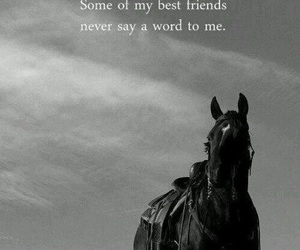 best friend, horses, and quote image
