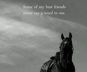 best friends, horse, and quote image