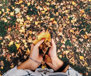 autumn, cool, and photo image