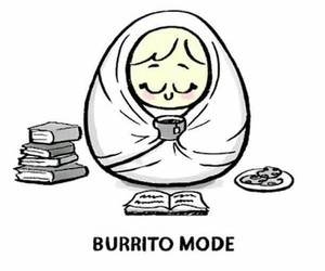 book and burrito image
