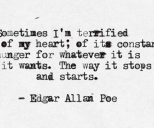 edgar allan poe, heart, and quote image