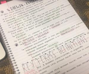 bio, biology, and college image