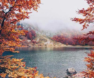 autumn, nature, and lake image