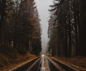 amazing, photography, and danai_s_ image