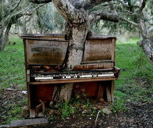 forest and piano image