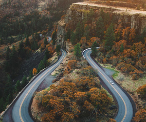 nature, travel, and autumn image