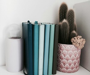 books, inspiration+, and cactus image