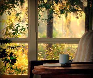 book, window, and coffee image