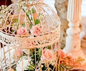 decoration and birdcage image