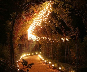 lights, autumn, and beautiful image