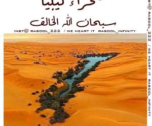 الوطن العربي, هل تعلم, and معلومه image