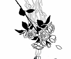 black and white, fire, and rose image