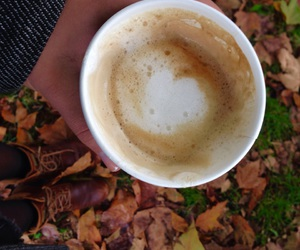 autumn, coffee, and fallen leaves image