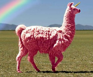 pink, unicorn, and rainbow image