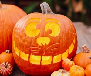 disney, pumpkin, and cute image