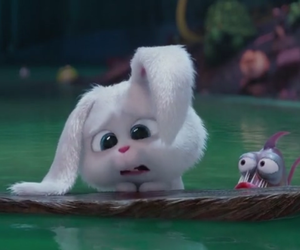 snowball and the secret life of pets image