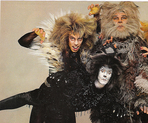 cats, victoria, and rum tum tugger image