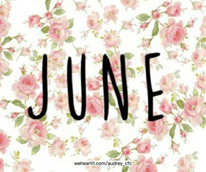 flowers, june, and beautiful image