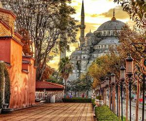 autumn, blue mosque, and istanbul image
