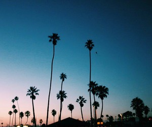 aesthetic, california, and la image