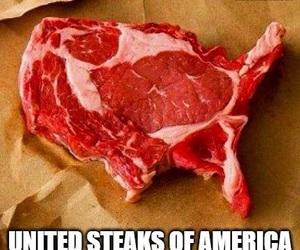 america, funny, and joke image