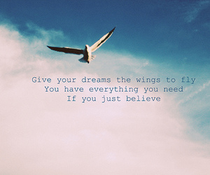 fly, believe, and Dream image