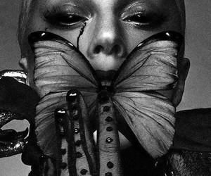 art, ladygaga, and borboleta image