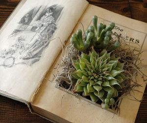 book, vintage, and plants image