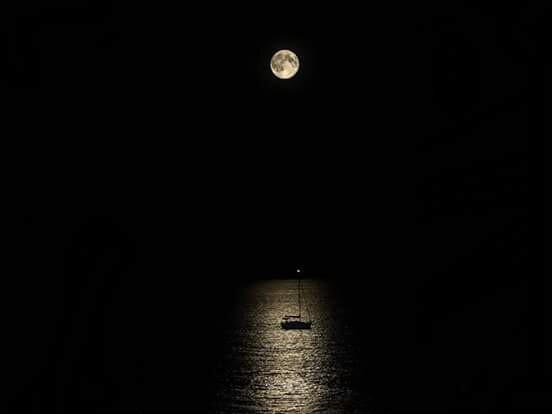 black, sailing, and sailing boat image
