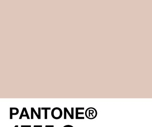 pantone, colors, and pallete image