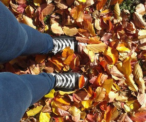 autumn, leaves, and justagirl image