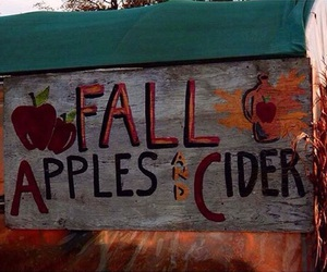 apples, autumn, and fall image