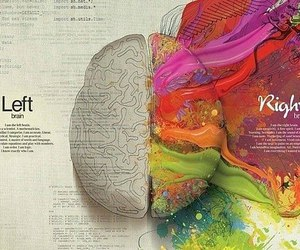 art, brain, and color image