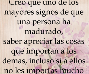 frase, libro, and colleen hoover image