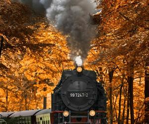 train, autumn, and landscape image