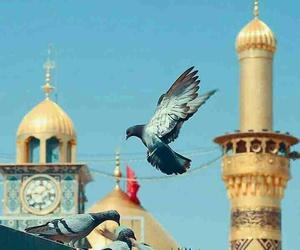 شيعي, رافضي, and عاشوراء image