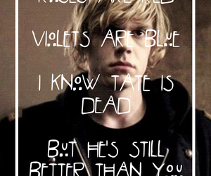tate, wallpaper, and evan peters image