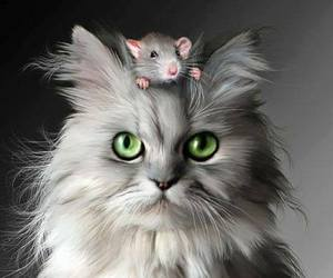 cat, mouse, and friends image