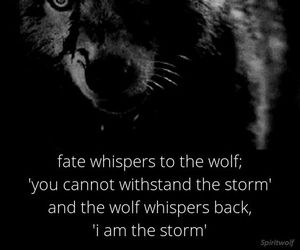 wolf, quotes, and fate image