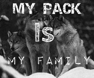 dark, pack, and true image