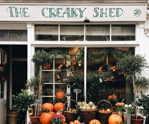 autumn and shop image