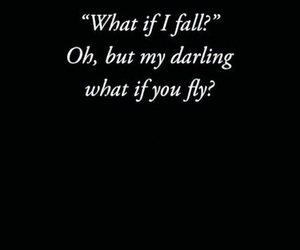 quote, fly, and fall image