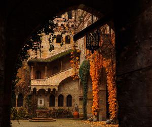 autumn, architecture, and fall image